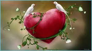 3d Love Birds Wallpapers ...