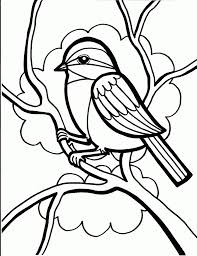 Small Picture bird coloring pages crow bird coloring pages duck bird coloring
