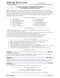 executive resume templates free 19052017 business development best executive resume format