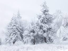 Kuvahaun tulos haulle winter holiday wikimedia commons