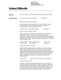 Insurance Agent Resume Sample Insurance Underwriter Resume Samples