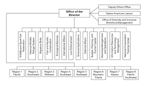 U S Fish And Wildlife Service An Overview Everycrsreport Com