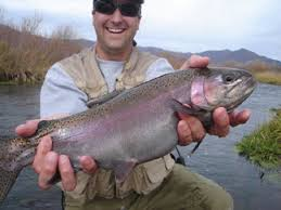 Utah Fly Fishing Totalflyfishing Com