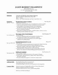 Template Resume Format For Sales Job Lovely Jewelry Representative
