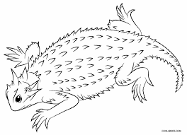 Small Picture Printable Lizard Coloring Pages For Kids Cool2bKids