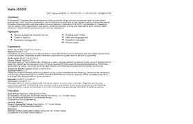 Walmart Sales Associate Resume Sample Walmart Resume Application