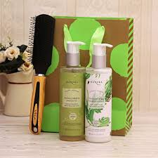 mantra ayurvedic haircare essentials with vega brush in a gift bag