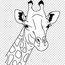 Child Hand Giraffe Transparent Png Image Clipart Free Download