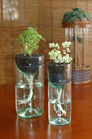not included a green thumb diy project details crafting com make these adorable wine bottle crafts