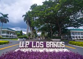 Image result for UPLB photos