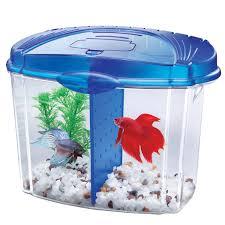 Aqueon Betta Bowl Aquarium Kit in Blue