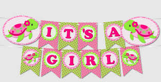 Pink Girl Turtle Party Banners Instant Download Pdf