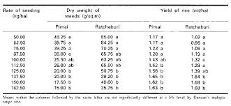 Weight And Price Of Weed Chart Www Bedowntowndaytona Com