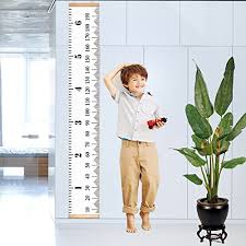 Height Charts Offers And Reviews