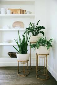 plants stands plant pot wooden stand nz