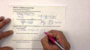 professional essay sample classification