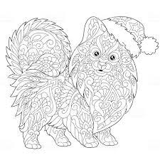 Kleurplaat Van Pommeren Hond Stockvectorkunst En Meer Beelden Van