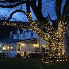 outdoor tree lighting ideas. How To Install Christmas Lights Outside   Festive Outdoor Tree Lighting Ideas