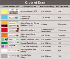 The Order Of Draw In Phlebotomy Charts Chart Paintings Search Result At Paintingvalley Com