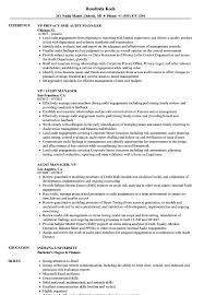 Audit Manager Resume Samples Vp Audit Manager Resume Samples Velvet Jobs
