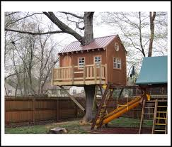Tree House Plans Design