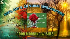 good morning wishes whatsapp hd video gif 3d wallpaper