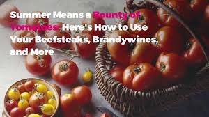 How Would A Tomato Look Under Blue Light 6 Most Popular Types Of Tomatoes Plus How To Use Them