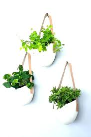 wall mounted plant holders wall mounted plant holders mount holder terrarium design indoor pots hanging plan