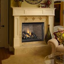 fireplace inserts design and ideas avalon dv insert cambridge face for gas new gas fireplace insert