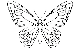 Printable Butterfly Outline Butterfly Patterns Printable Template Free Printable