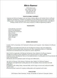 Executive Resume Template A Resume Template For A Software Engineer