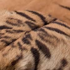 Skin Turgor Charting Skin Rug Van Tiger Skin Rug Taxidermy Skin Turgor Charting