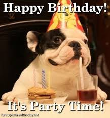 Happy Birthday Funny Dog Party | http://justforgagscollections ... via Relatably.com