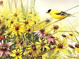 yellow bird flower diy picture painting by numbers kit wedding decoration oil canvas 16x20 inch frameless framed with wood frame in painting calligraphy