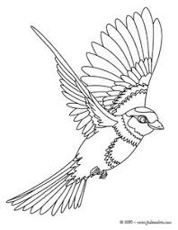 Small Picture Common Kingfisher online coloring Coloring page ANIMAL
