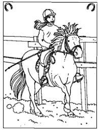 Paarden Kleurplaten Paardenpraattv Paarden Kleurplaat 853747