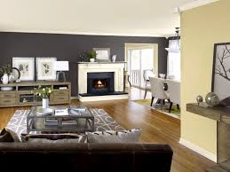Bathroom Tasty Grey Accent Wall Interior Design Ideas Dark Gray For Painting  A Family Room Gallery Magnificent Tips Living Modern Painted Floors  Inspiration ...