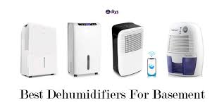 dehumidifier for basement reviews