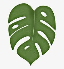 leaf png moana stenciling and template jungle leaf clipart transpa png 133094