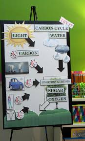 Science Chart Project Active Anchor Chart Carbon Cycle Carbon Cycle Biology