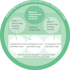 Whs Organization Chart 28 Paradigmatic Health And Safety Organisational Chart