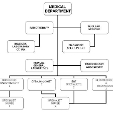 Organizational Chart Of Medical Department 8 Download