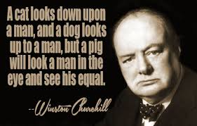 Churchill Quotes Delectable Winston Churchill Quotes II