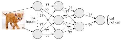 نتیجه تصویری برای neural network