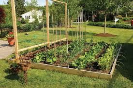 Small Picture Gardening 4 Life Cinder Block Garden Gardening Pinterest diy
