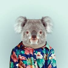 zoo animals in clothes. Interesting Animals ZOO BOOK  Animals In People Clothes Intended Zoo Animals In Clothes O