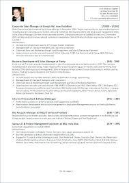 Resume Format For Real Estate Marketing Manager Keywords Sales A