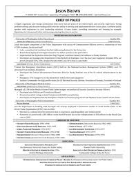 100 Police Officer Resume Sample Professional Security