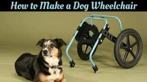 dog wheelchair your own diy wheelchair