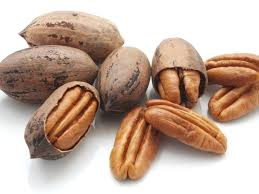 pecan nut. Exellent Pecan How Do You Pronounce U0027Pecanu0027 To Pecan Nut A